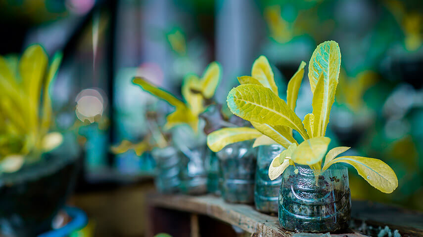 materas para plantas y jardin